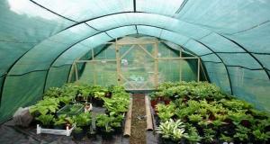 Выбираем затеняющую сетку для сада и огорода.