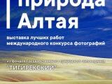 В Рубцовске открылась выставка лучших работ международного конкурса фотографий «Живая природа Алтая - 2017»