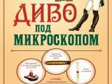 В Рубцовске открылась выставка микроминиатюр